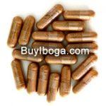Iboga capsules - BuyIboga.com